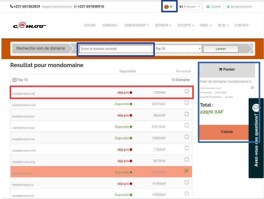 recherche du domaine sur camoo.hosting
